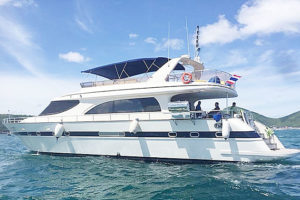 Photo 1 of Party Yacht